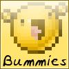 Bummies attack the llama boxes